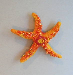 front of starfish