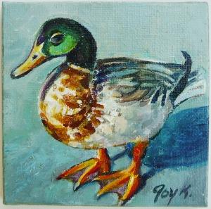 duck standing
