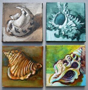 shell studies autocorrect