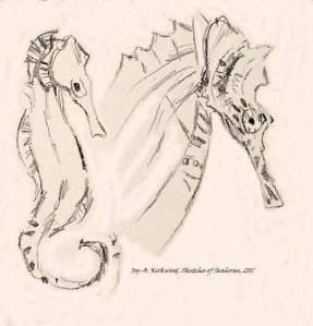 2 Seahorses in Sepia