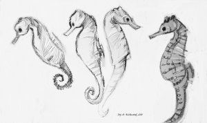 4 swimming seahorses pp