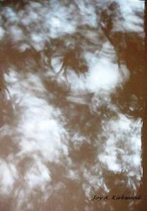 paint brush shadows ac2