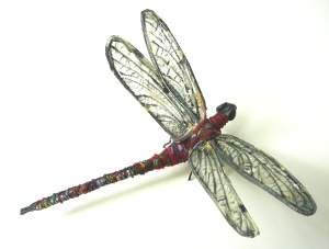 1 red and black dragonfly