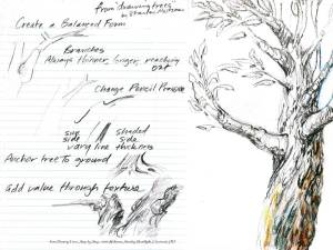 Tree info 1