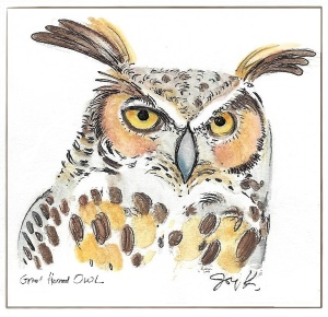 great-horned-owl-drawing